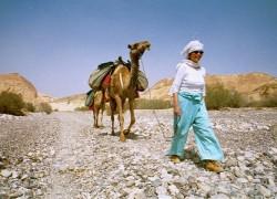 בעקבות אברהם משה למצרים וממנה