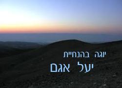 YAEL-AGAM-LOGO